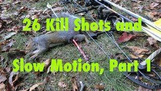 getlinkyoutube.com-Squirrel Bow Hunting Part 1