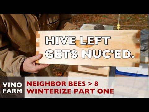 New Bees - Nuc Box + Winterization (1) - Week 7