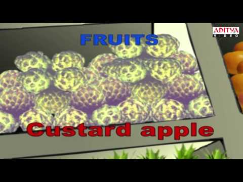 Fruits & Vegetables - Kids Pre/Play School Nursery Rhymes Animated Video
