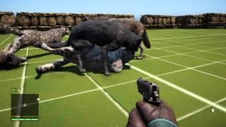 getlinkyoutube.com-Far Cry 4 pack wolves vs pack of snow leopard