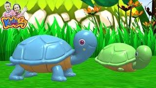 getlinkyoutube.com-เพลง เต่า  เพลงเด็ก -Turtle Song By KidsMeSong