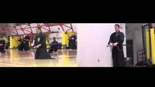 The Annual Spring Iaido and Jodo Seminar