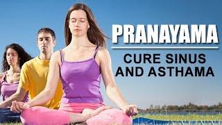 getlinkyoutube.com-Pranayama - Cure Sinus and Asthama