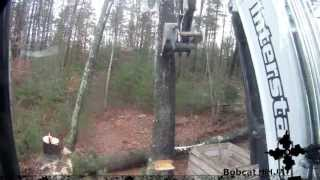 getlinkyoutube.com-Cutting Trees With Chainsaw and Excavator