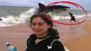 getlinkyoutube.com-Top 10 Shark Attacks You Won't Believe