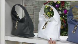 Dooney & Bourke Leather Hobo with Logo Lock and Accessories on QVC