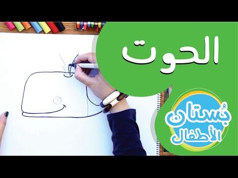 سلسلة رسمة ومعلومة - ح14: كيف أرسم حوت