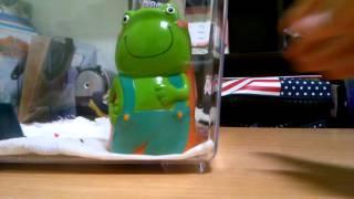 getlinkyoutube.com--별사탕-팬더마우스 짝짖기♥