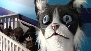 CatDad Feeds His Kitties In Cat Mask Fail! (Original Video)