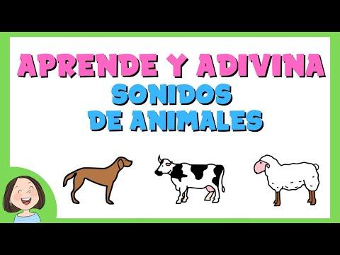 Aprende y Adivina los sonidos de los animales domésticos y