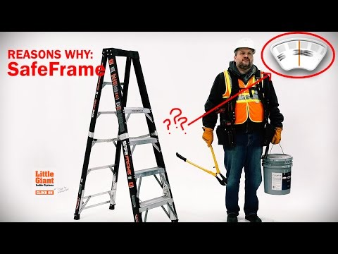 Little Giant Safety Ladder