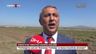 Osmaniye'de yerfıstığı hasadına başlandı