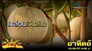 """getlinkyoutube.com-ตะวันรุ่ง : """" เมล่อนเงินล้าน """" ทำได้จริง!! โดย สุวิทย์ ไตรโชค ปราชญ์เกษตรของแผ่นดิน"""
