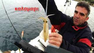 squid ΚΑΛΑΜΑΡΙ ΠΩΣ ΘΑ ΤΟ ΠΙΑΣΟΥΜΕ ΔΙΑΦΟΡΕΣ sotos fishing