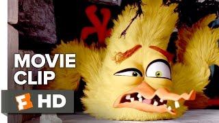 getlinkyoutube.com-The Angry Birds Movie Movie CLIP - House of Horrors (2016) - Jason Sudeikis, Josh Gad Movie HD