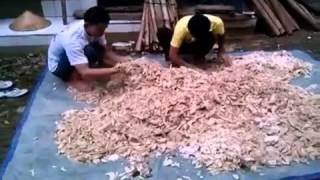 getlinkyoutube.com-gedebok pisang untuk pkn segala ternak ,pola HCS