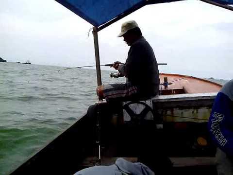 Memancing dengan teknik dasaran [bottom fishing] - strike siakap merah