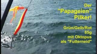 getlinkyoutube.com-Dorschangeln in Heiligenhafen - Hochseeangeln Ostsee