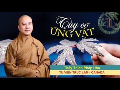 Tùy Cơ Ứng Vật - Thầy. Thích Pháp Hòa (Oct.25, 2014)