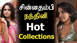 Chinna Thambi Serial Nandhini actress Pavani Reddy Hot Collections| Biography