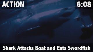 getlinkyoutube.com-Mako Shark attacks boat and eats 700lb Swordfish - ULTIMATE FISHING TV