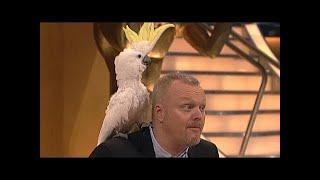 getlinkyoutube.com-Dieser Kakadu hat´s drauf! - TV total