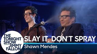 Slay It, Don't Spray It with Shawn Mendes width=