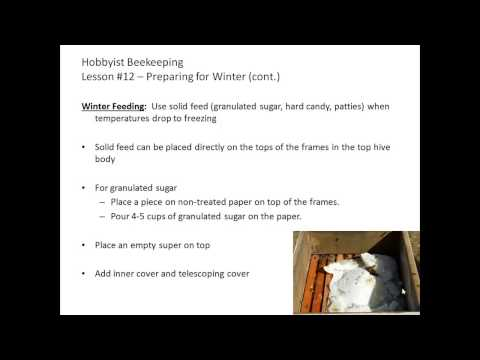 Hobbyist Beekeeping - Lesson 12: Preparing for Winter