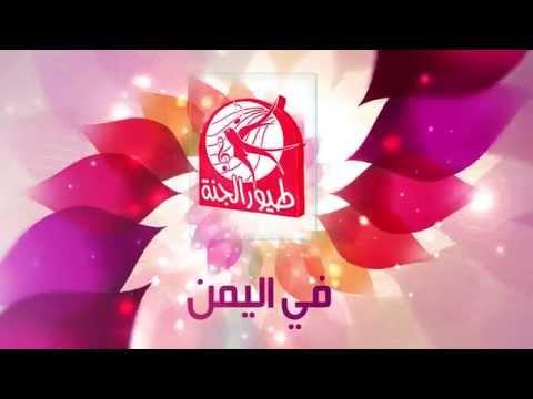 إعلان حفلات اليمن   طيور الجنة