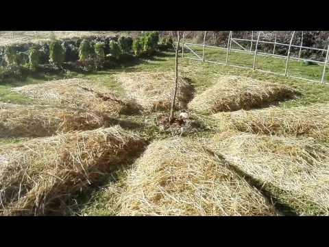 Micro Ferme en Permaculture - Les Jardins de Pan (Décembre 2016)
