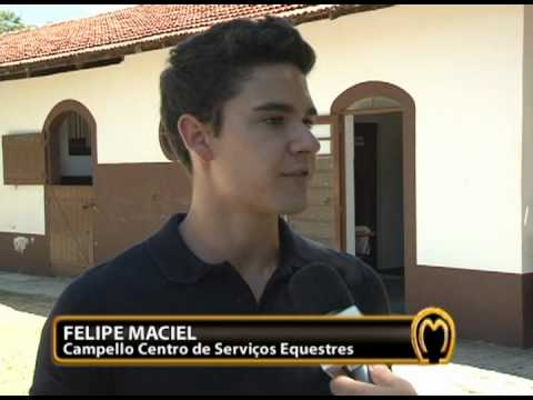 Haras Campello - TV Mangalarga Marchador