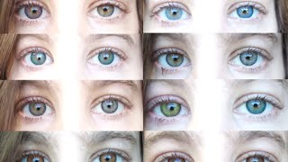getlinkyoutube.com-Color Contacts: All 12 Freshlooks Color Contact Lenses