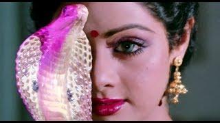 Nagina - Sridevi transformation scene