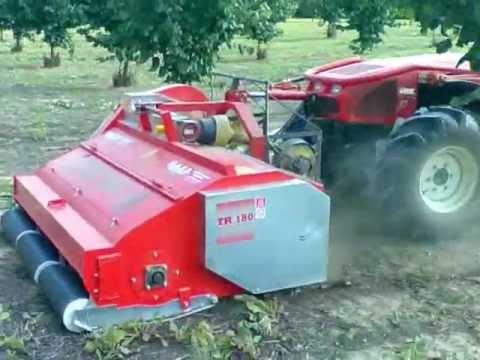 CASCINACIAPUN Raccolta nocciole con raccoglitrice CASSINELLI TR 180 e trattore GOLDONI QUASAR 85