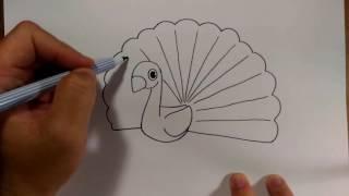 getlinkyoutube.com-วาดการ์ตูน นกยูง ง่ายๆ  สอนวาดรูป   วาดการ์ตูน กันเถอะ