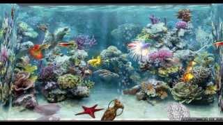 getlinkyoutube.com-Rubis Topaz -  SL aquarium virtuel et poissons animés, SL virtual fish tank and swimming fishes
