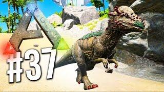 "getlinkyoutube.com-ARK : Survival Evolved - BRAND NEW DINOSAUR ""PACHY""! EP 37 (Ark Survival Evolved)"
