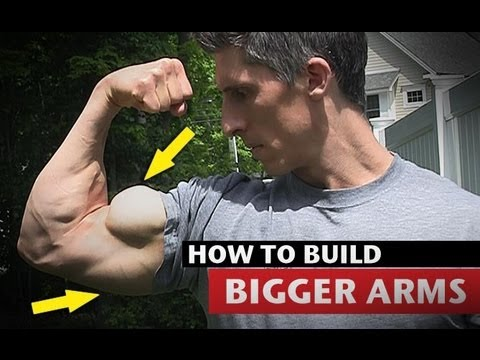 How to Get Big Arms By @trainer2thepros