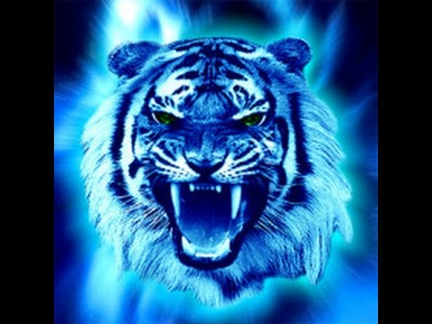 Chinese Astrology Water Tiger