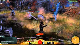 getlinkyoutube.com-Guild Wars 2 Norn Ranger Skills - Snow Wurm and combo's