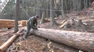 getlinkyoutube.com-Off Grid Log Cabin Build - Moving logs