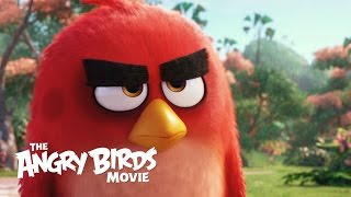 getlinkyoutube.com-The Angry Birds Movie - Official Teaser Trailer (HD)