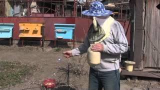 Весенняя подкормка пчёл