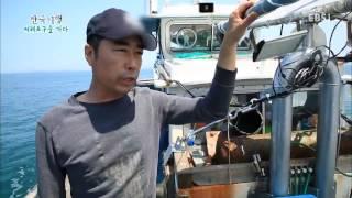 getlinkyoutube.com-한국기행 - Korea travel_서해포구를 가다 2부 보령바다 대물을 쫓다_#002