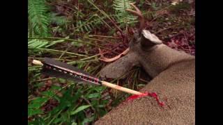 getlinkyoutube.com-Primitive Archery Hunting for Deer. Otzi Arrow. Ishi Arrow. Traditional Bowhunting