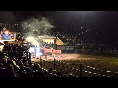 National Western Stock Show: An amazing rodeo closing