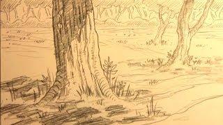 getlinkyoutube.com-How to Draw Forest Backgrounds for Manga