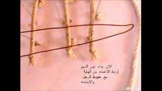 getlinkyoutube.com-عمل شبكه القطا والحمام بالطريقه العراقية