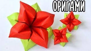 Красивый ЦВЕТОК ИЗ БУМАГИ / Оригами поделки
