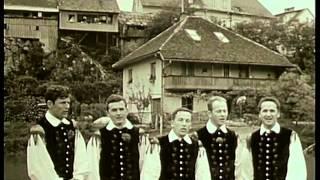 getlinkyoutube.com-Ansambel Lojzeta Slaka - Kje mamici bi rož nabral (Official Video)